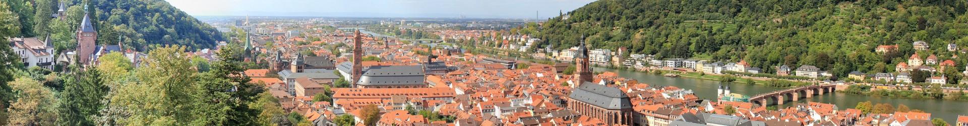 altstadt-panorama - daniel jaeger